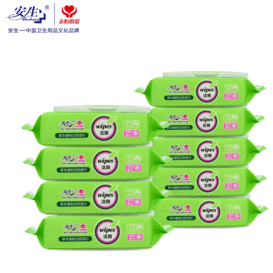Feminine Care Antibacterial Wipes Flushable Toilet Wet Wipe pictures & photos