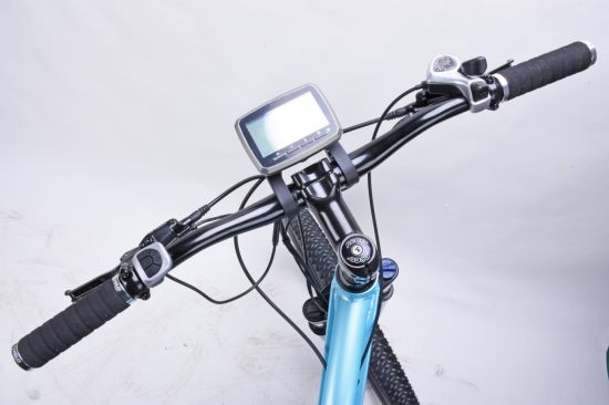 Mountain Bicycle for Sale Lithium Battery Mountain Electric Bike pictures & photos