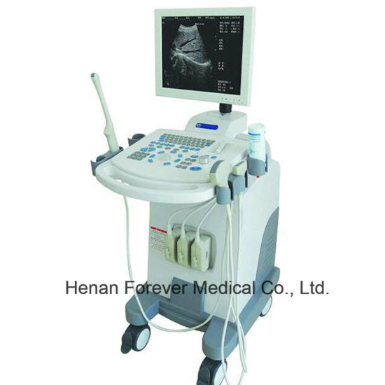 Medical Trolley B/W Digital Ultrasound Machine for Clinic