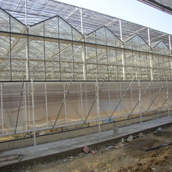 China Agriculture Glass Greenhouse for Vegetables/Garden