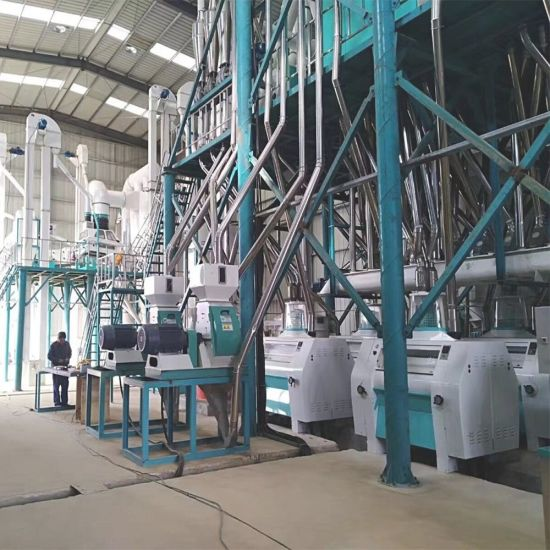 Kenya Fortificated Vitamin Adding Maize Flour Miling Macking Machine Sifted Maize Meal
