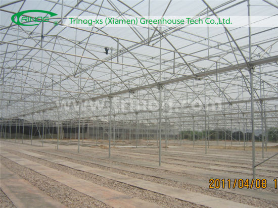 China Easy Assembly Galvanized Steel Commercial Greenhouse