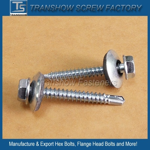 Galvanized Steel Roofing Screw SDS pictures & photos