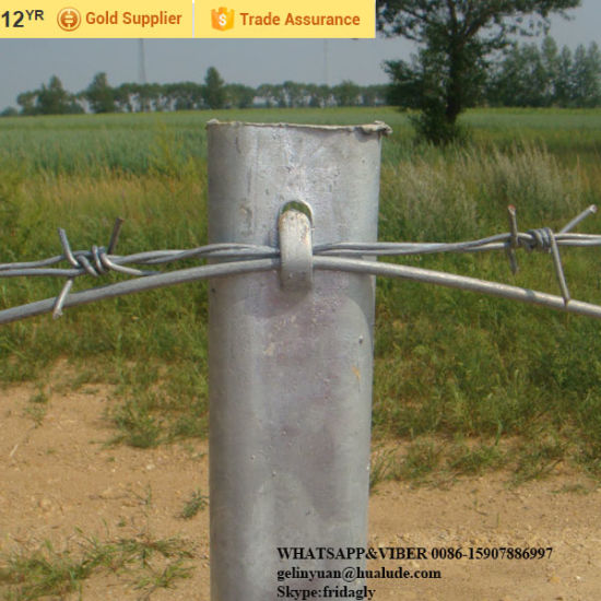 China Field Fence Wire Barb Wire Fence Tools Fence with Barbed Wire ...