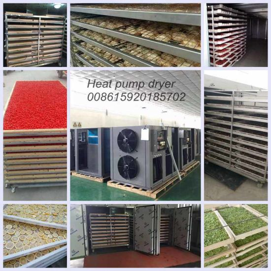 Drying Temperature Adjustable Industrial Fish Drying Machine pictures & photos