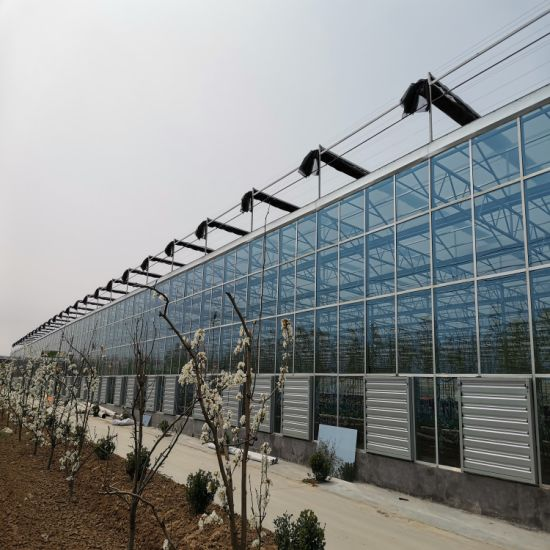Galvanized Steel Farm Poly Tunnel Greenhouse for Vegetables