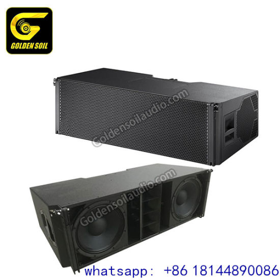 Enable for Remote Control Built in DSP and Class D Amplifier Module Active Line Array Active Line Array Speaker pictures & photos