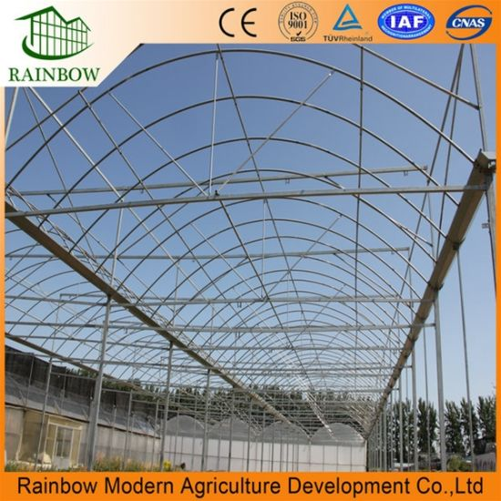Multi-Span Po Film Agriculture Hydroponics Greenhouse for Vegetable