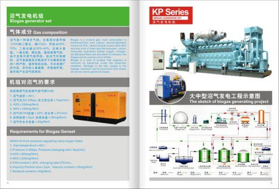 China Kanpor Factory Direct Sell 250kVA Kanpor Gas Biogas