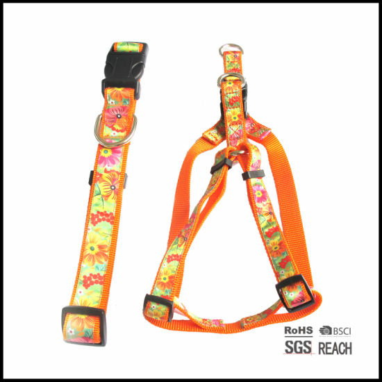 Custom Pet Collars and Step in Walking Harnesses Set for Dogs
