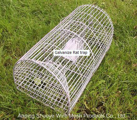 Live Small Animal Trap Cage pictures & photos