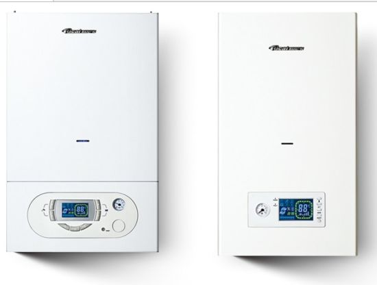 China High Quality Wall Mounted Gas Boiler Can Be Connected with ...