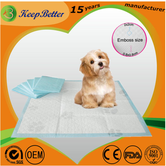 Pulp Healthy Dog & Cat Pet Diaper Pee Mat House Training Pads Super  Absorbent