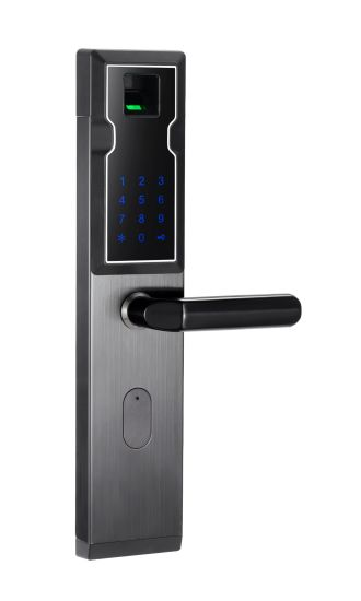 Biometric Security Gate Electronic Smart Fingerprint Keyless Door Door Lock pictures & photos
