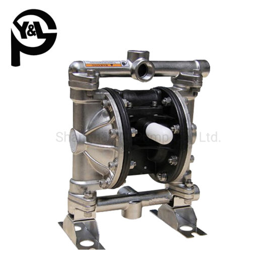 1/2inch Stainless Steel 316 Air Operated Duplex Pump for Oil