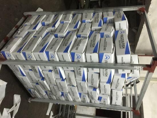 Supply Seafood Fish Frozen Mackerel