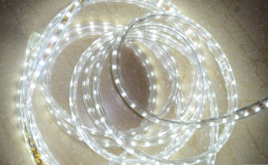 Ce EMC LVD RoHS Two Years Warranty High Voltage 110V 220V White LED Rope