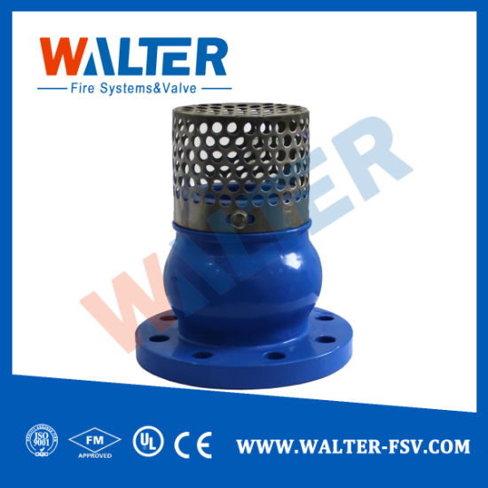 Check and Foot Valve