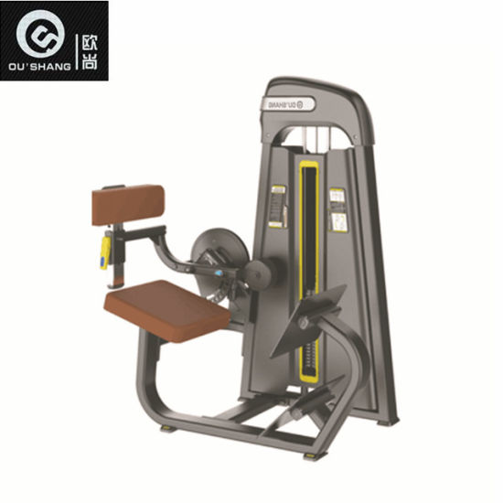 ad0006b5f5c68 China Pin Loaded Back Extension Machine 7005 Gym Fitness Equipment ...