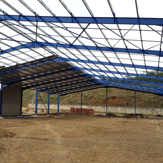 Steel Structure Workshop for Sale pictures & photos