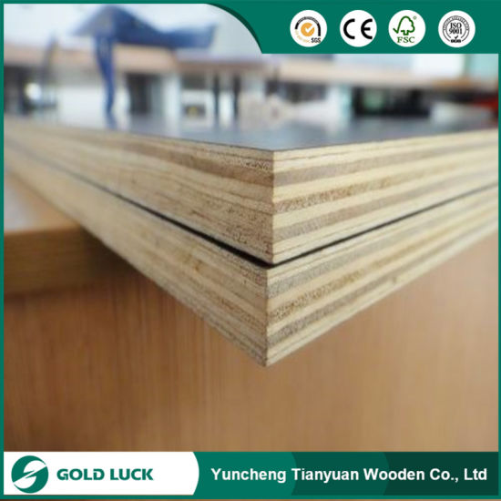 Poplar/Combi/Hardwood Core Film Faced Plywood for Building pictures & photos