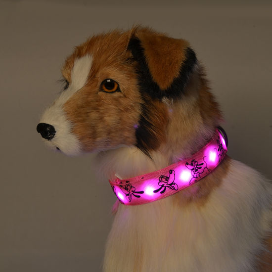 Nylon Camouflage Night Safety LED Flashing Pet Dog Necklace Collar Pet Supply pictures & photos