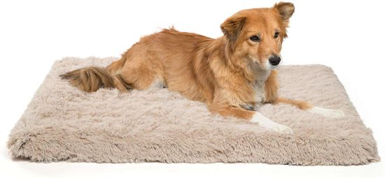 Healthy and Comfortable Puppy Beds Luxury Dog Beds with Detachable Easy Cleaning Cover
