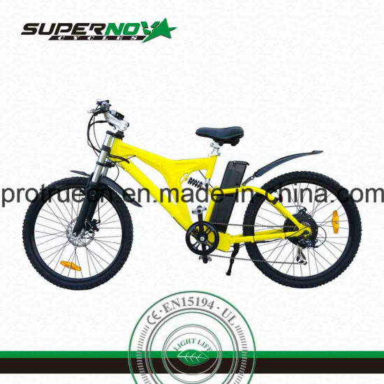 China Electric Bike with Intelligent Controller - China Electric