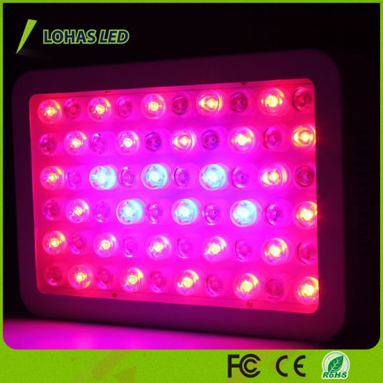 Veg/Bloom Panel LED Plant Grow Light with Switches pictures & photos