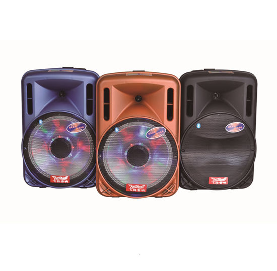 Feiyang Temeisheng 12inch Rechargeable Battery Speakers with Professional Amplifier Price $35 F12-1