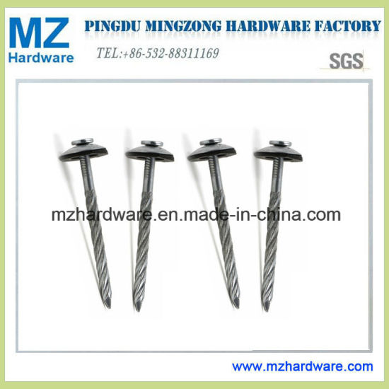 Galvanized Assembled Screw Twisted Spiral Concave Roofing Nail pictures & photos