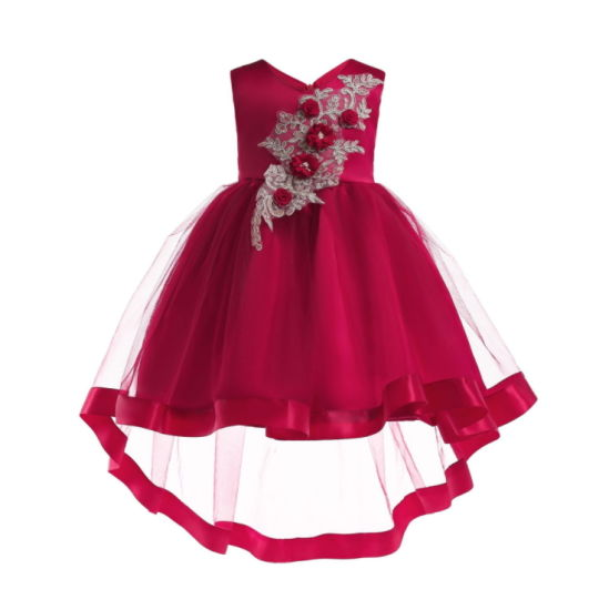 Children′s Embroidered V-Neck Tuxedo Dress pictures & photos