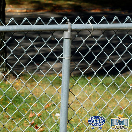 China Pvc Coated 100 Ft Roll Chain Link Fence With Green Security