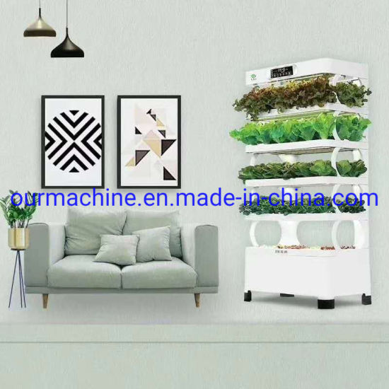 China Factory Supplier Indoor LED Hydroponic Soilless Cultivator