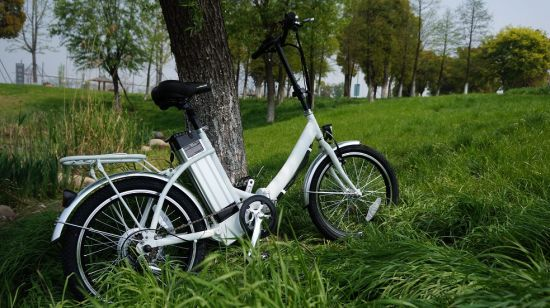 Good Price Electric Foldable Bike City Bike Made in China pictures & photos