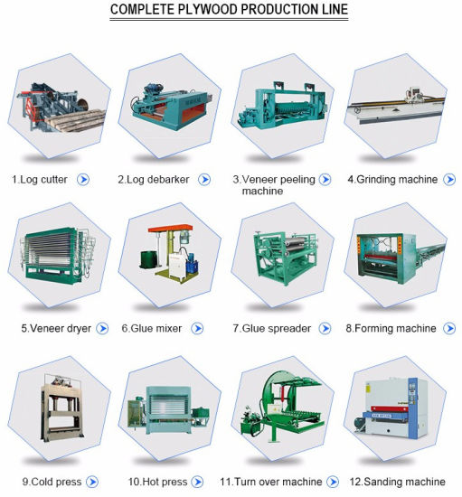 6*9FT Plywood Making Machine for Woodworking Machinery