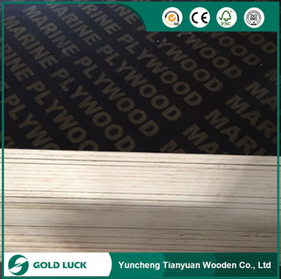 Melamine Concrete Panels Marine Plywood for Construction 1220 X 2440 mm pictures & photos