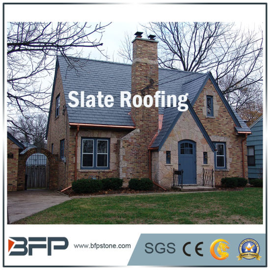Grey Roofing Slate Cladding Tiles Building Materials pictures & photos