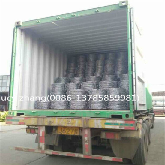 Galvanized or PVC Coated Barbed Wire Manufacture pictures & photos