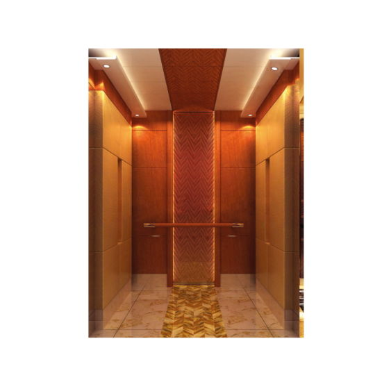 Best Price High Quality Machine Roomless Passenger Elevator pictures & photos