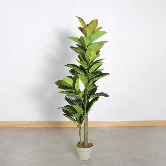 150cm And 180cm Artificial Ficus Elastic Decorative Plant Simulation Rubber Tree Rnamental Bonsai China Artificial Plant And Rubber Tree Price Made In China Com