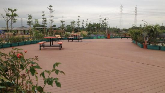 UV-Proof Environmental Friendly Protaction Wood and Plastic Decking