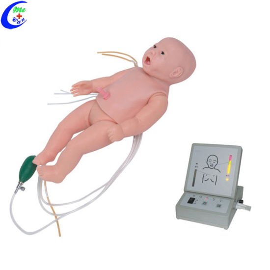 Full Functional Neonatal Nursing Simulation Manikin and Infant CPR Dummy