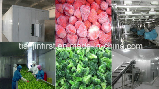 High Quality Fluidized Quick Freezer for Berries Vegetable and Bread pictures & photos