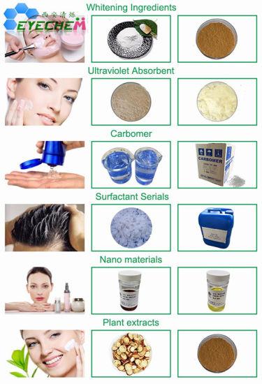 Hyoscyamine 1%-3%Belladonna P. E. High Quality Belladonna Extract