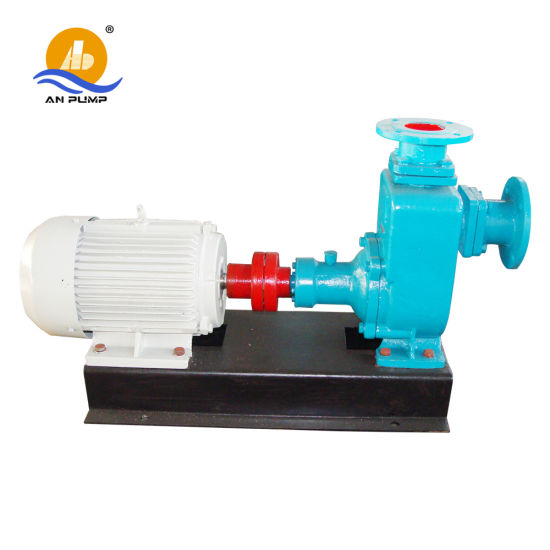 Italy Saer Self Priming Pump for Sale pictures & photos