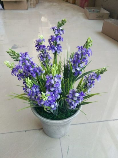 Artificial Flowers of Lavender Gu916215310 pictures & photos
