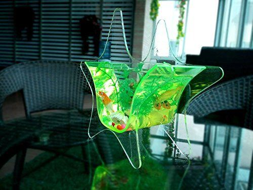 Fish Shaped Plexiglass Customized Color Acrylic Wall Mounted Fish Tank pictures & photos