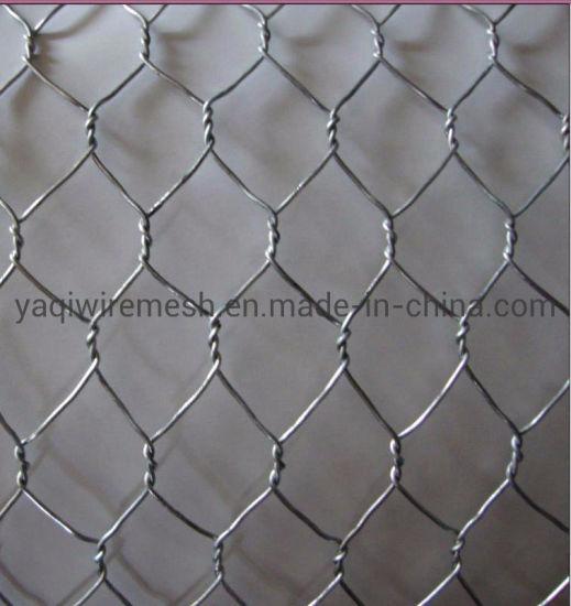 """Hot Sale Low Price 1/2"""" Galvanized Hexagonal Wire Mesh Chicken Wire Mesh"""