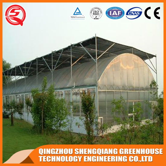 Agricultural/Vegetable/Hydroponic Growing Systems/PVC Pipe/Vertical/Farming Used/Plastic Single Span Film Greenhouse
